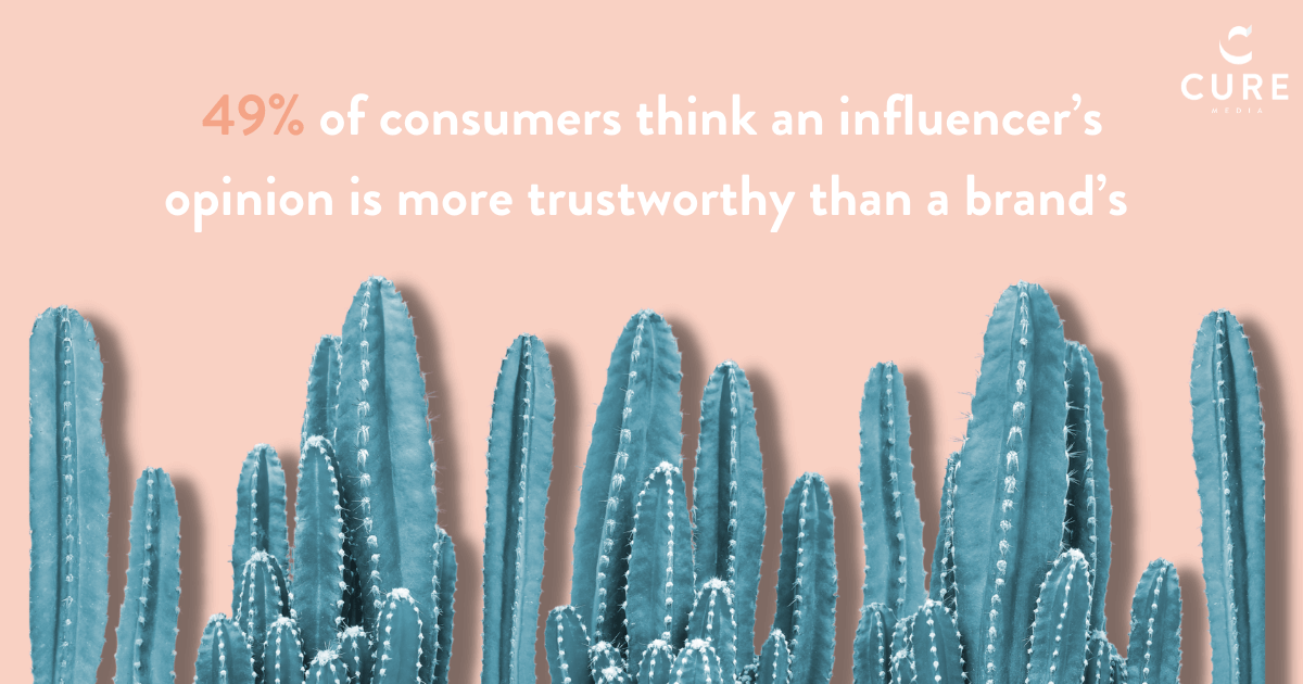 A row of cacti - 49% consumers trust influencers more than brands